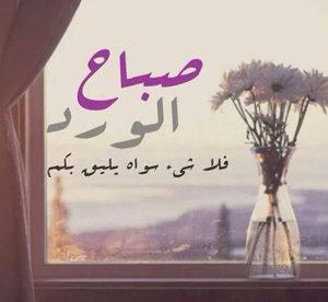 صور صباح الورد جميلة للواتس اب والفيس بوك
