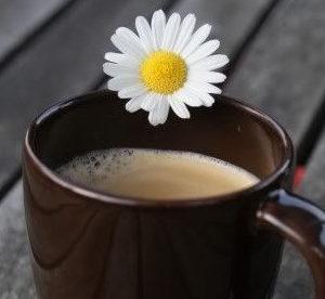 صور تصاميم صباح الخير، صور تصاميم قهوة ورد صور صباح جميل شروق الشمس، صور لتصميم صباح الخير من موقع أحلى صباح
