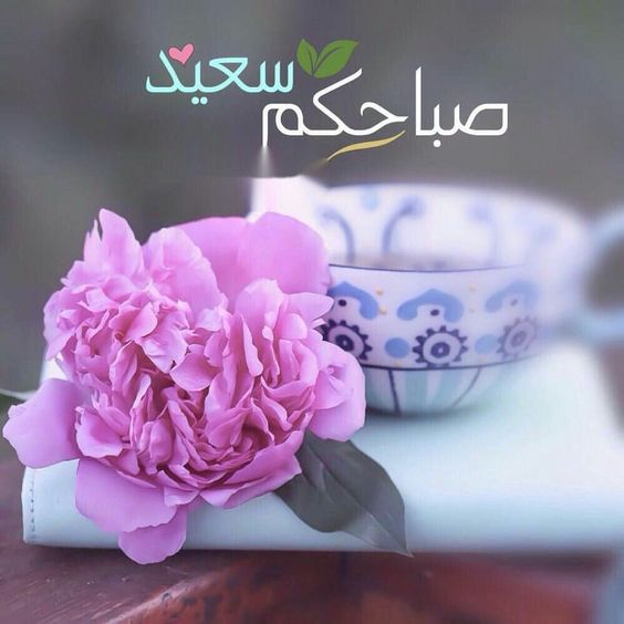 صور صباحكم سعيد - صور أحلى صباح