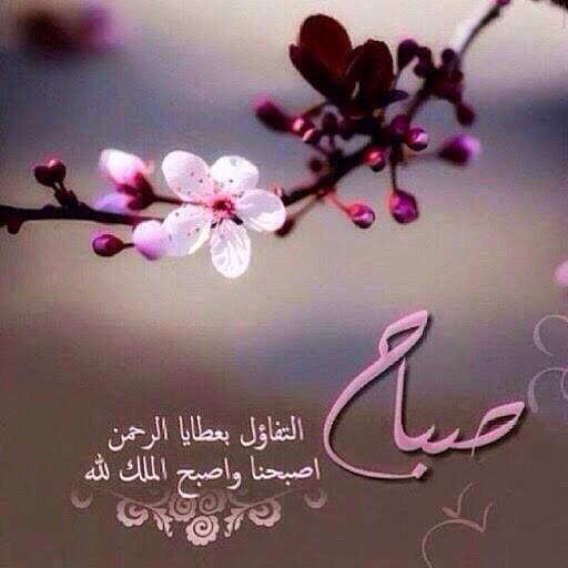 صباح التفاؤل بعطايا الرحمن اصبحنا واصبح الملك لله صور صباح الخير صباح الورد صباح الحب رسائل