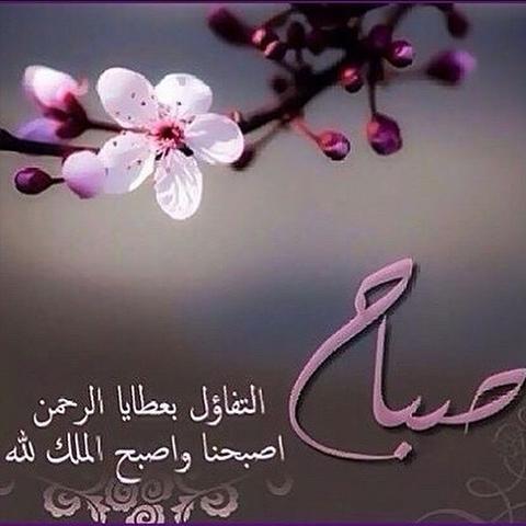 صباح الخير صباح النور دعاء صور صباح الخير صباح الورد صباح الحب