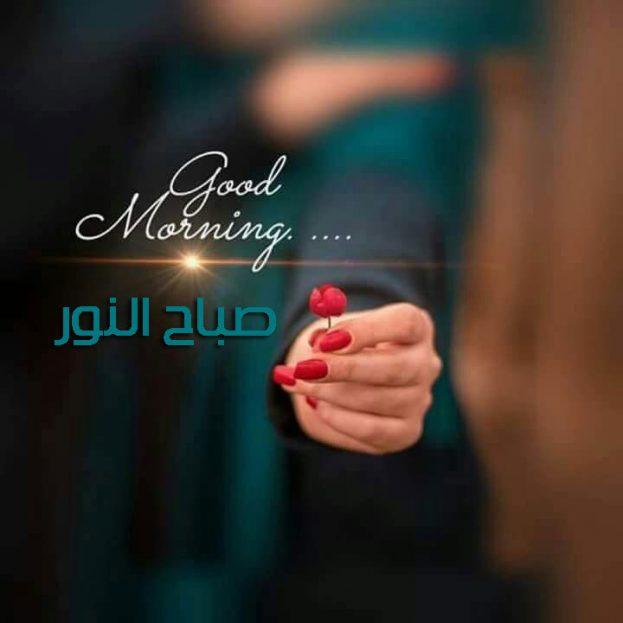 صور واتس اب صباح النور-صور صباح الخير وصور أحلى صباح