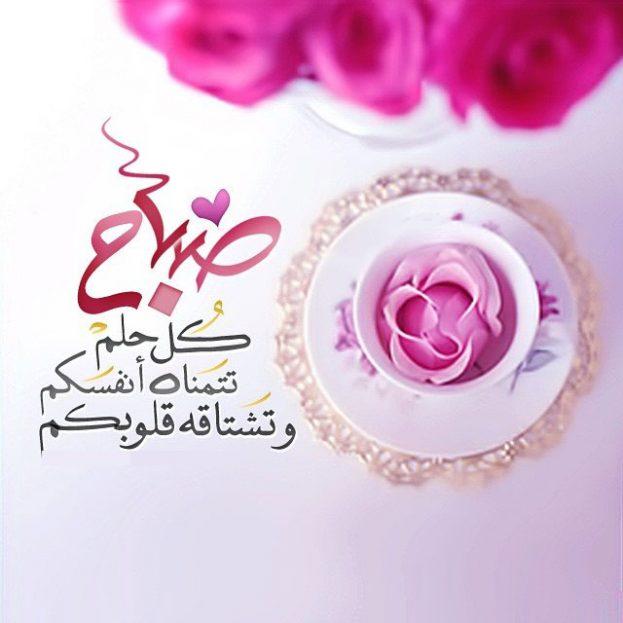 كلام حلو عن صباح الخير-صور أحلى صباح
