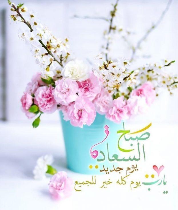 صور صباح السعادة جديدة 2020 صور صباح الخير صباح الورد صباح الحب رسائل ومسجات صباحية